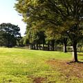 Photos: 公園