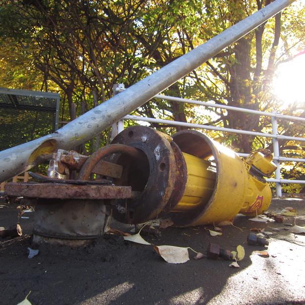 落ち葉と消火栓