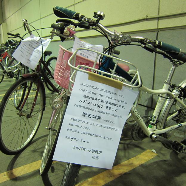 はぐれ自転車