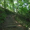 Photos: 登山道@初夏の札幌藻岩山