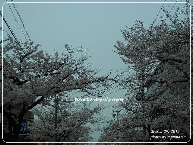 写真: s-092