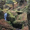 Photos: ホントに山の秋