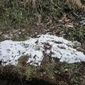 Photos: 12月26日「日陰の雪」