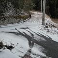 Photos: 1月26日「雪道」