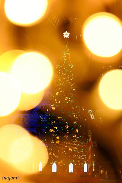 Photos: 一番星が輝く夜に・・・♪