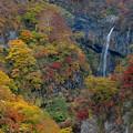 Photos: 秋の惣滝