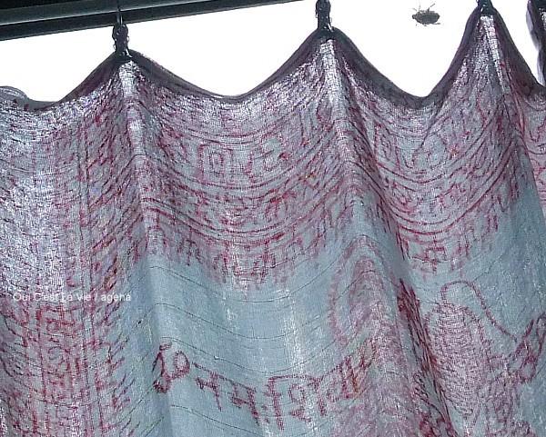 Photos: カーテン越しにコンニチハ。