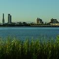 堤防から見える風景