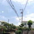 写真: パノラマを撮れるスマホや夏の雲