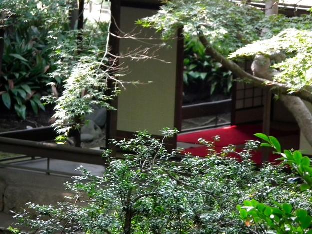 庭園のお茶室