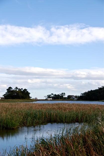 静かな阿川沼