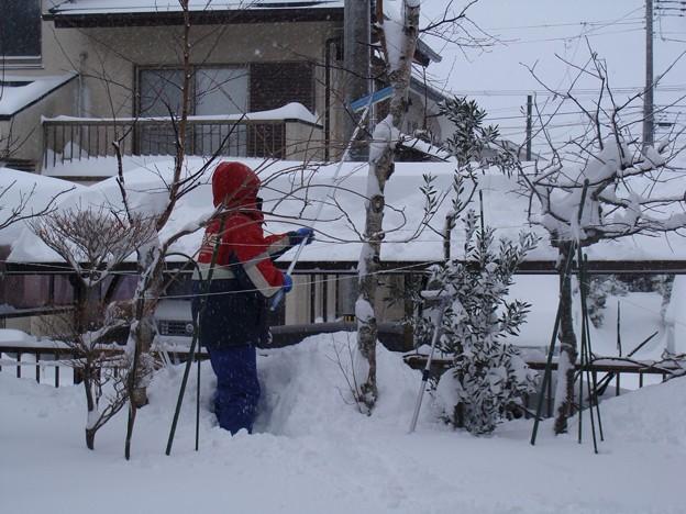 カーポートの雪下ろし