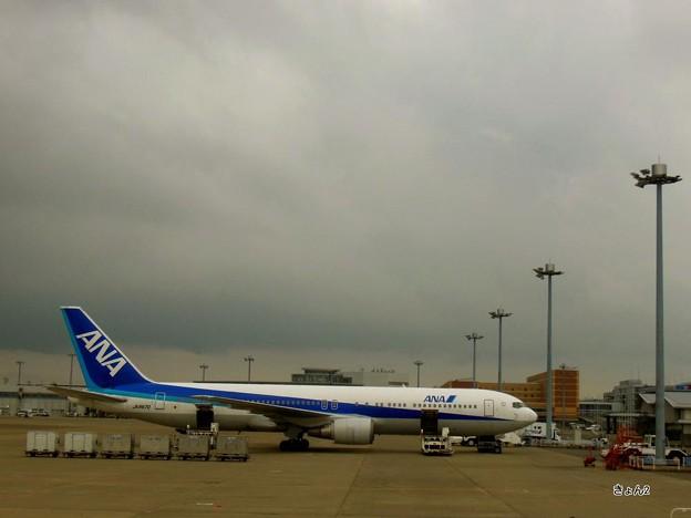 Photos: ☆3273雨の羽田☆