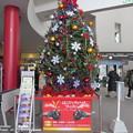 函館駅クリスマスツリー4