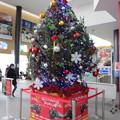 函館駅クリスマスツリー8