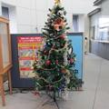 函館駅クリスマスツリー15