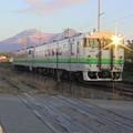 Photos: 2843D 普通列車