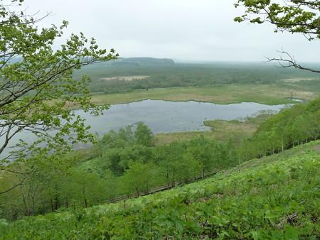1101-釧路湿原(シラルトロ湖)