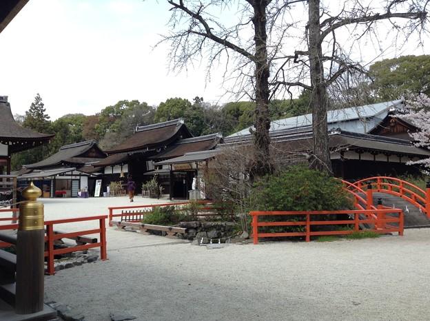1401-下鴨神社