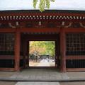 Photos: 秋への入り口