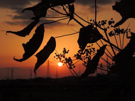 20121207夕陽