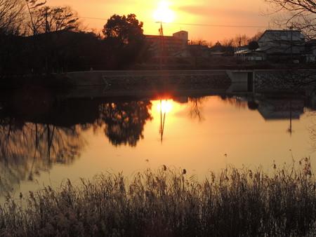 八ッ谷池の夕景
