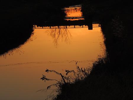 水面の夕映え