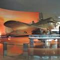 Photos: 大刀洗平和記念館:九七式戦闘機