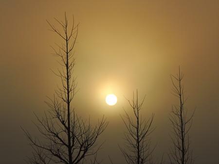 濃霧の白い朝日