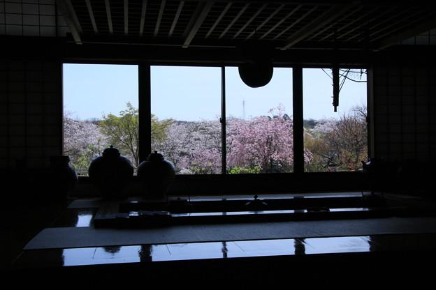 民芸館和室からの花景色