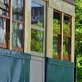Photos: 電車と新緑