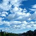 Photos: 川と夏空