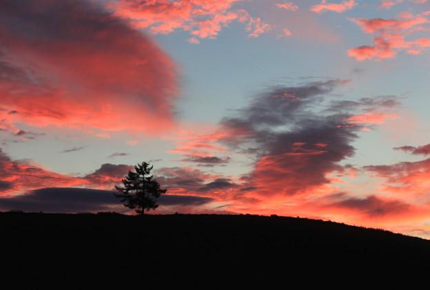 写真: 大地の朝焼け