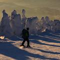 写真: 樹氷の中を軽快に