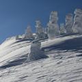写真: 夢の樹氷美観