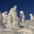 写真: 三宝荒神山の樹氷