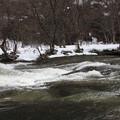 写真: 春嵐の渓谷