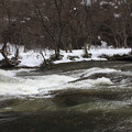 Photos: 春嵐の渓谷