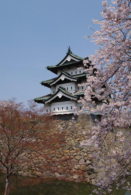 写真: 弘前城・天守閣