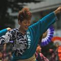 写真: 快活に雀が踊る