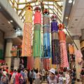 写真: 豪華絢爛の七夕祭