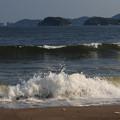 写真: 波荒らし