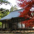 秋彩の神護寺