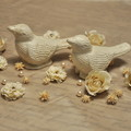 Photos: 小鳥とお花...★。:*