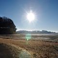 Photos: 冬の田園風景_16-50_K5IIs