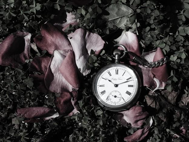 薔薇とクローバーと懐中時計
