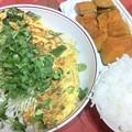 写真: 20120831夕食