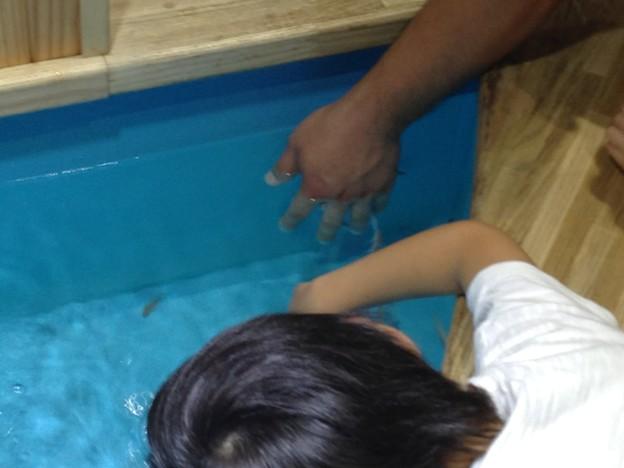 Photos: 山の水族館