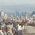 写真: 通天閣展望台から北方向 大阪城小さい(;´∀`)