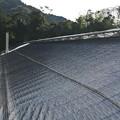 Photos: ビニールハウスの屋根